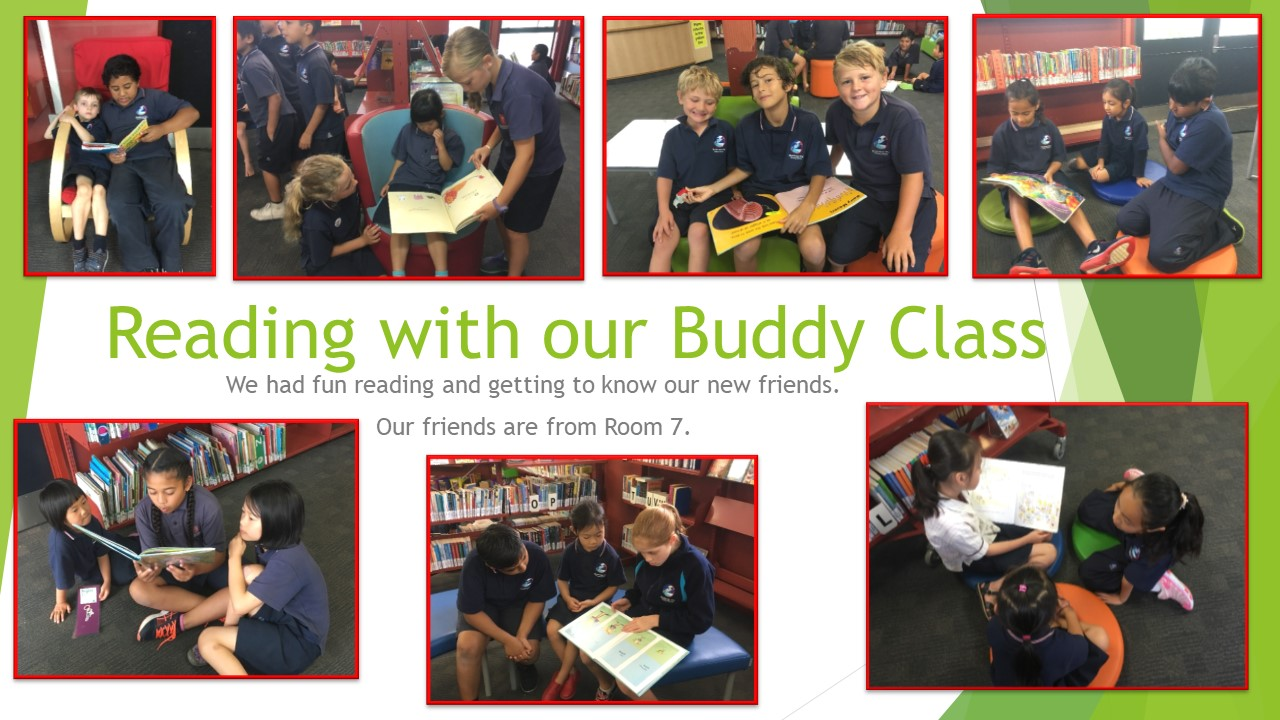 Blockhouse Bay Primary School - Buddy Reading