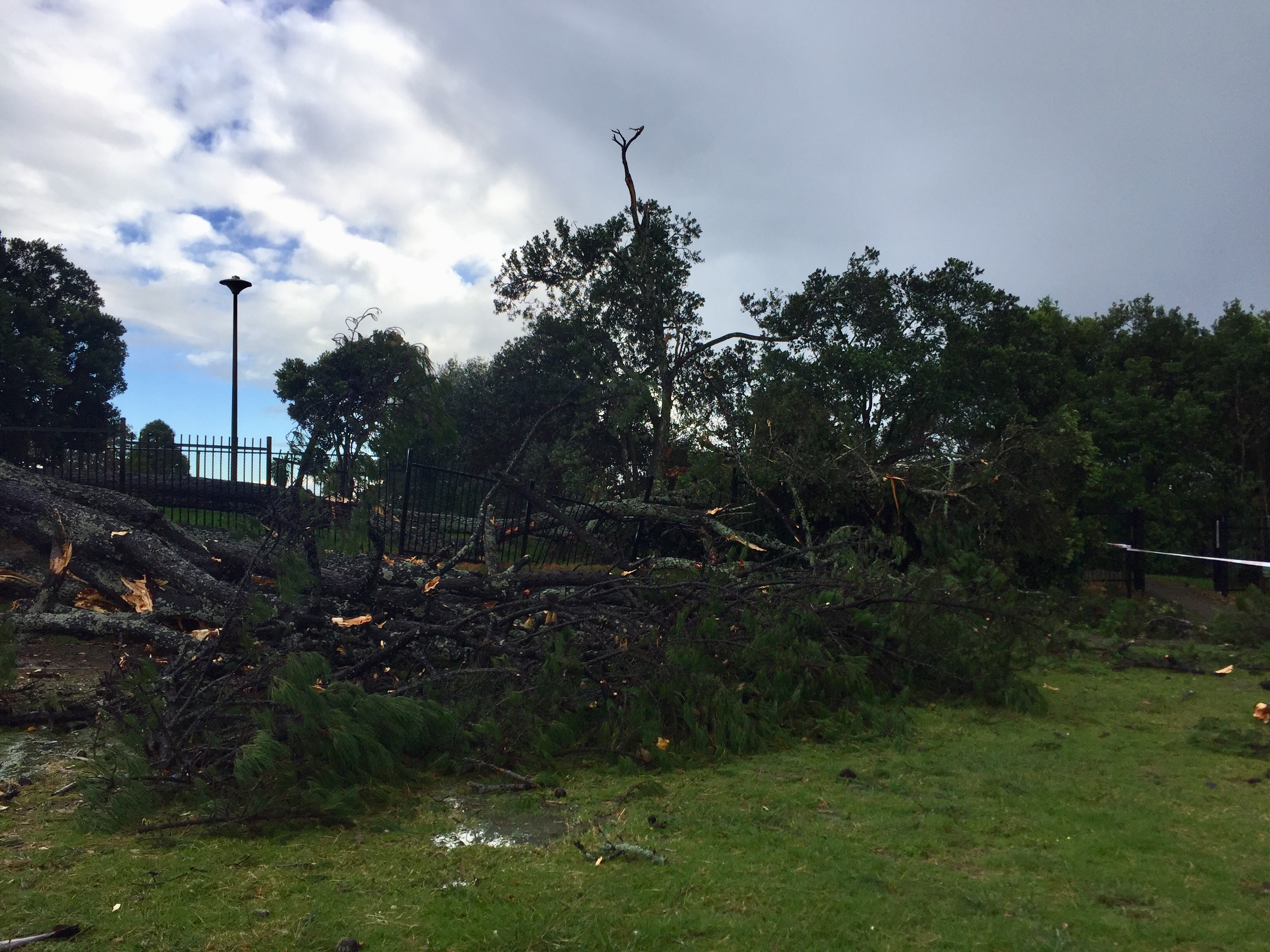 Blockhouse Bay Primary School - DESTRUCTION!