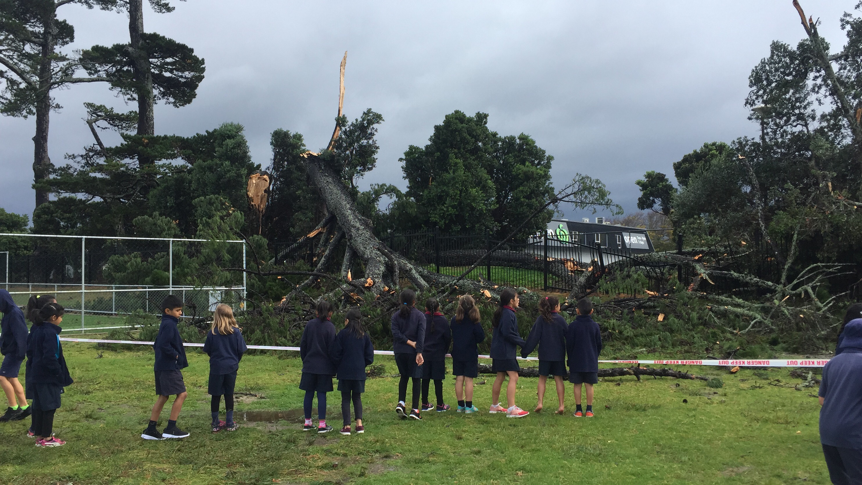 Blockhouse Bay Primary School - After the Storm