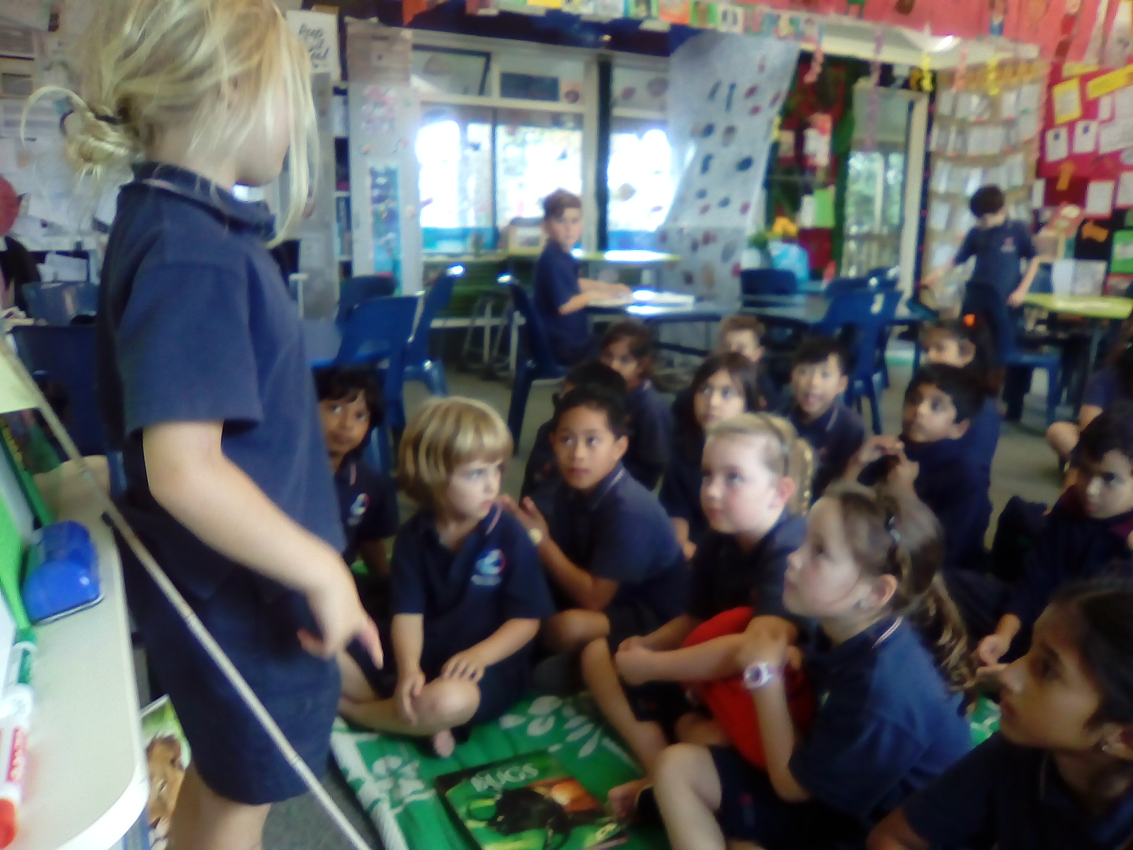 Blockhouse Bay Primary School - Nature Creation Part 2....