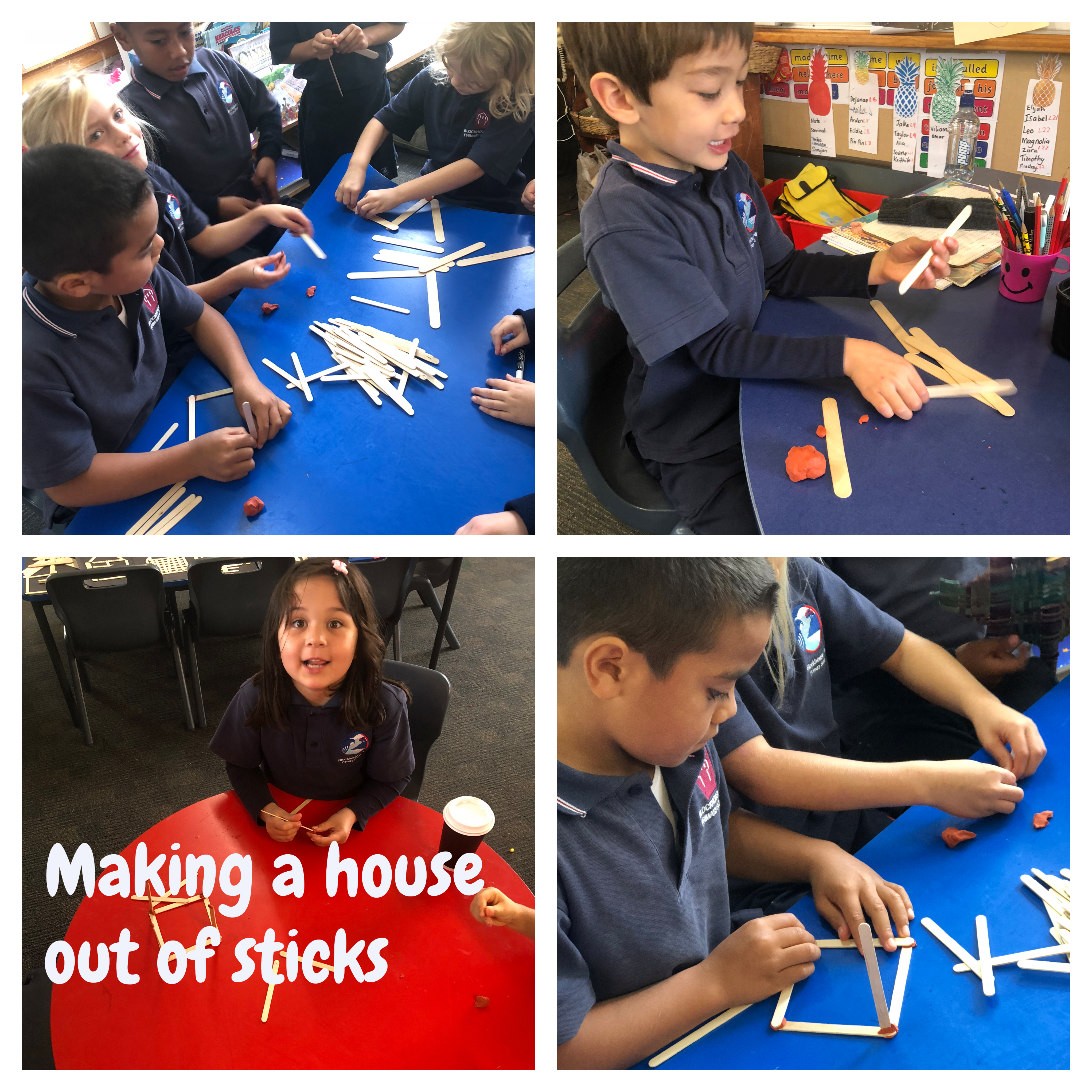 Blockhouse Bay Primary School - House of Sticks