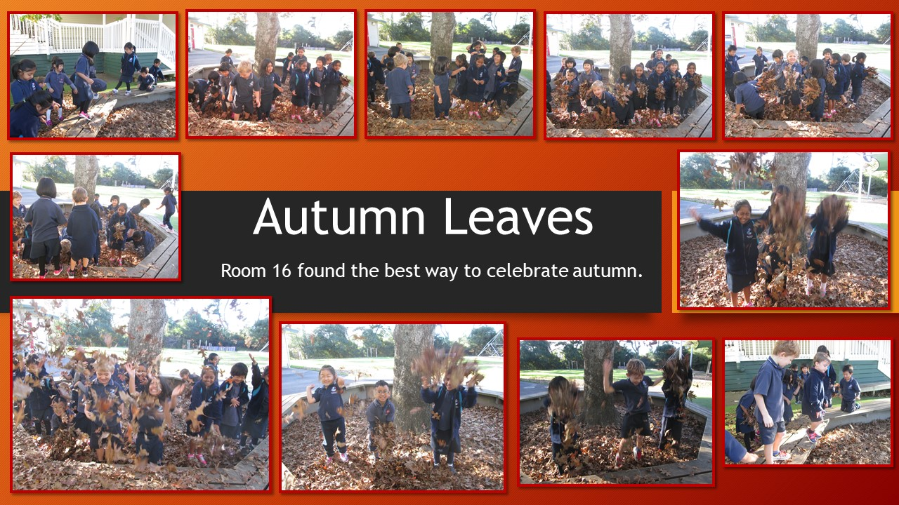 Blockhouse Bay Primary School - Autumn