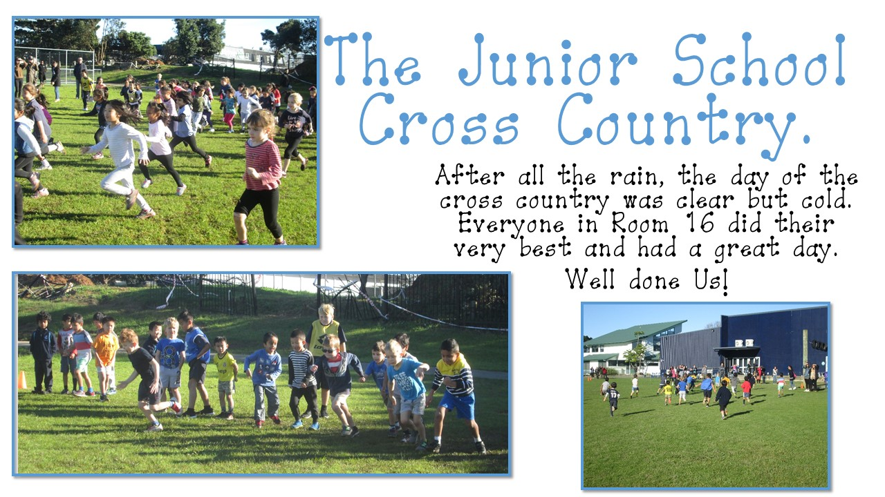 Blockhouse Bay Primary School - The Cross country