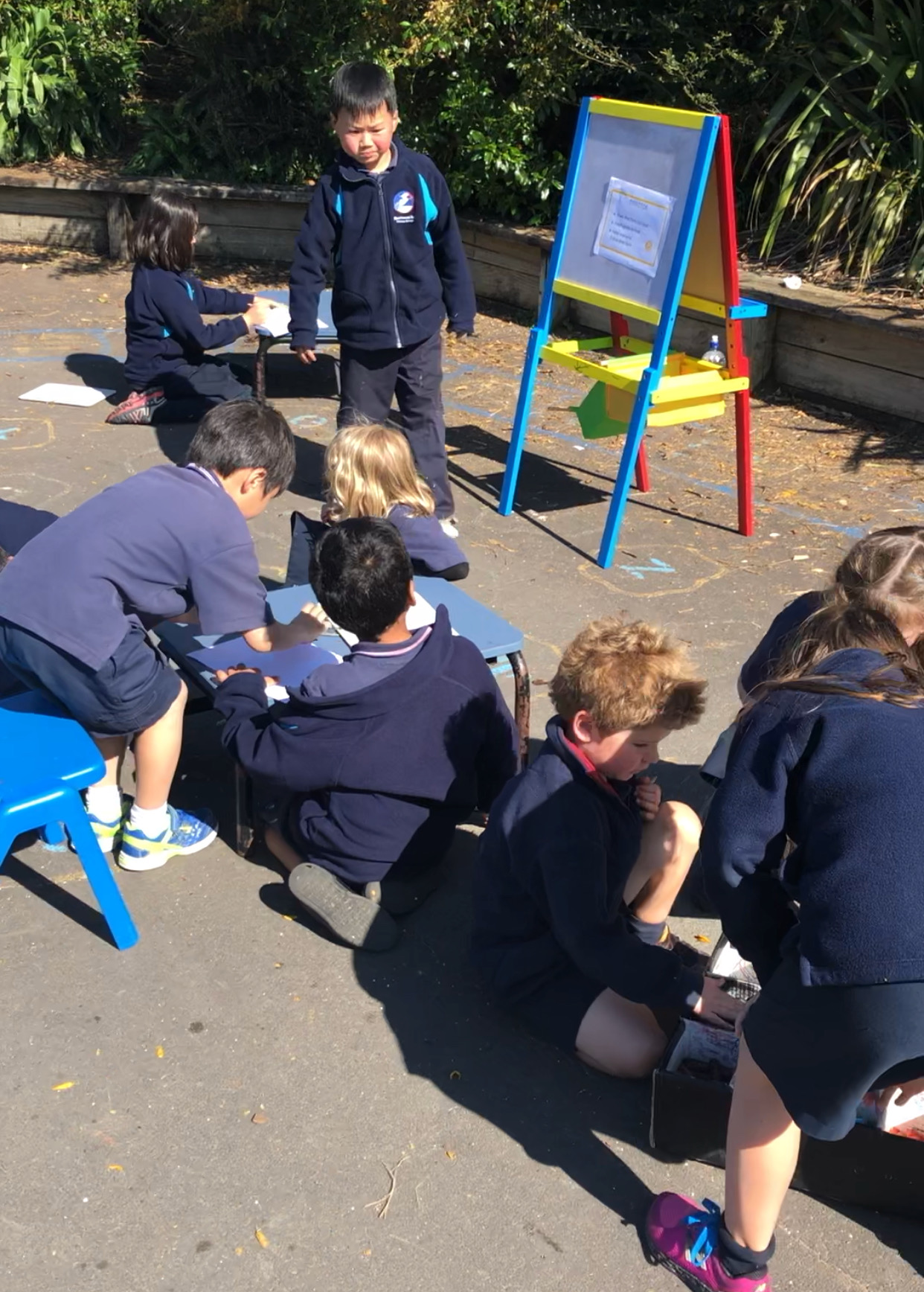 Blockhouse Bay Primary School - Outdoor Learning