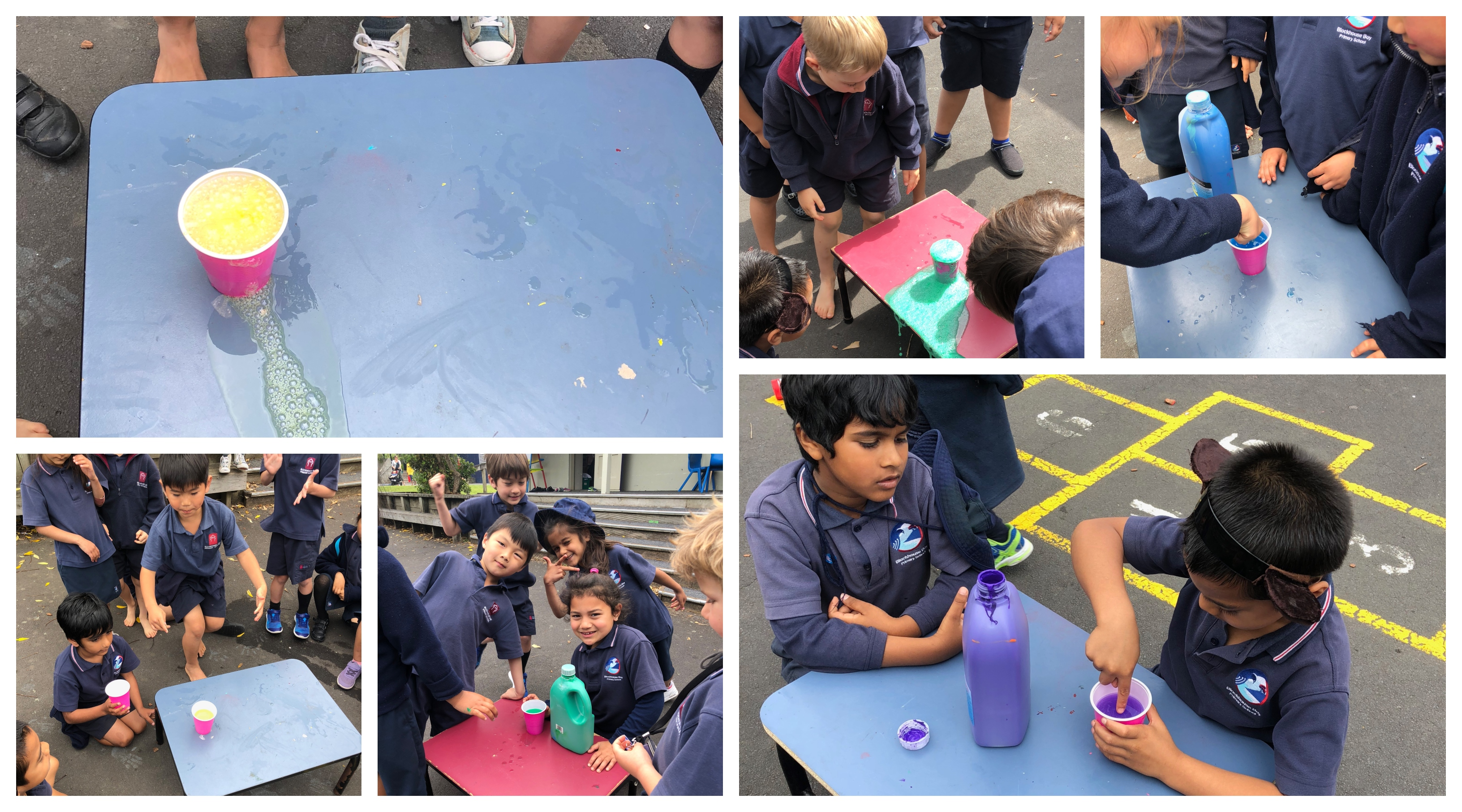 "Blockhouse Bay Primary School - Our ""Change"" experiment"