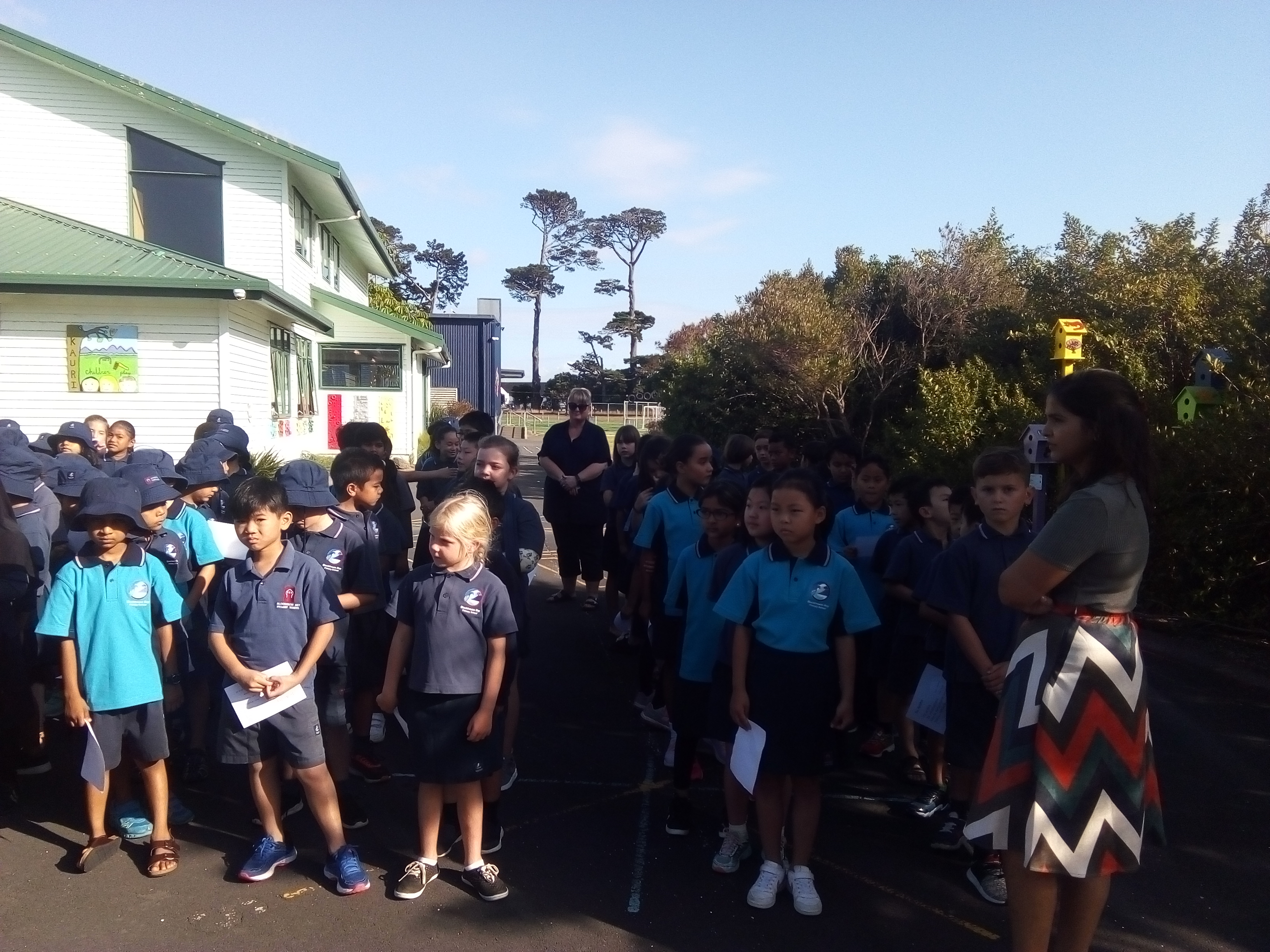 Blockhouse Bay Primary School - Welcome to Rimu 2019