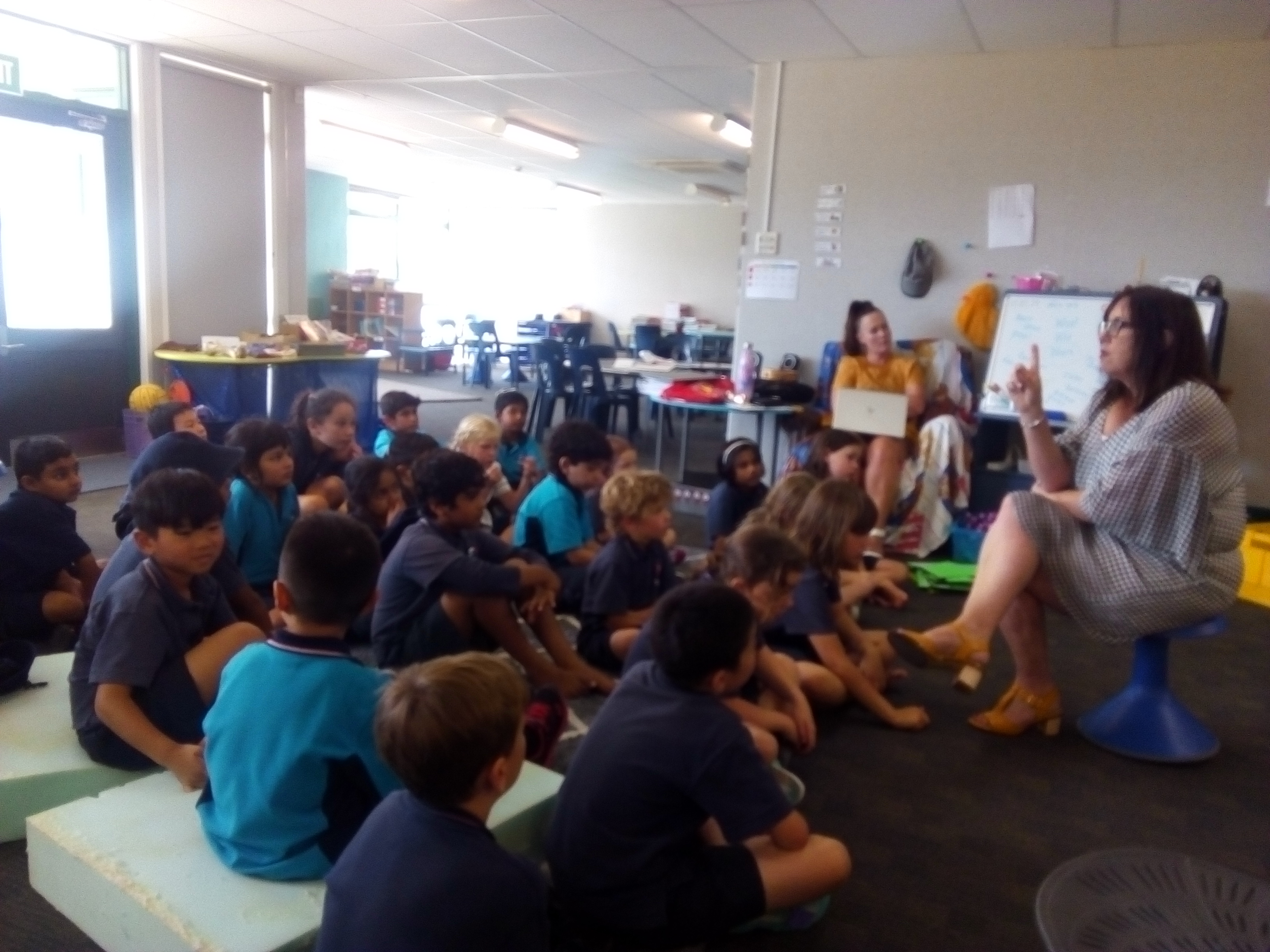 Blockhouse Bay Primary School - Inquiry- Mrs Crisp's Visit