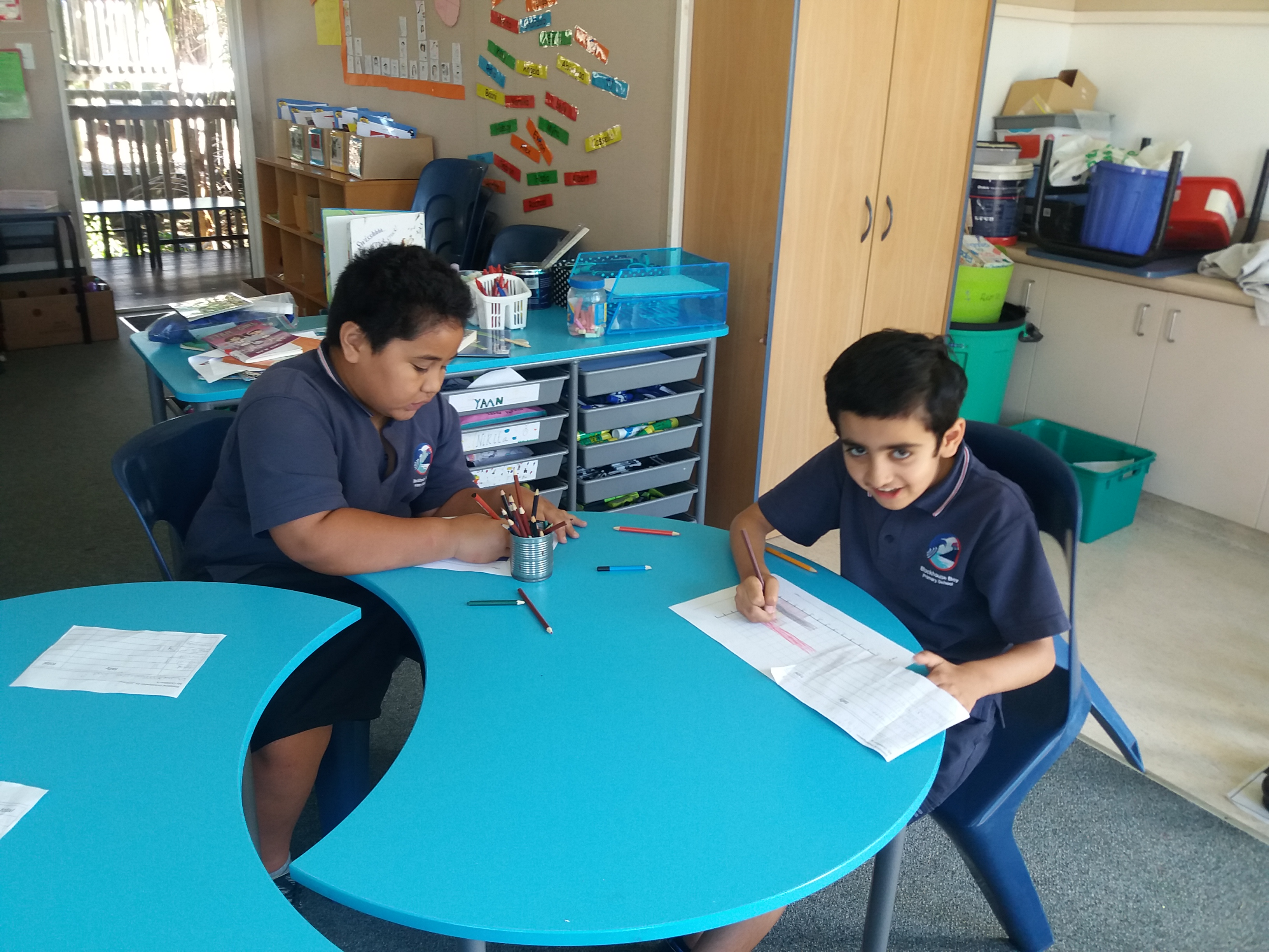Blockhouse Bay Primary School - Statistical Investigations