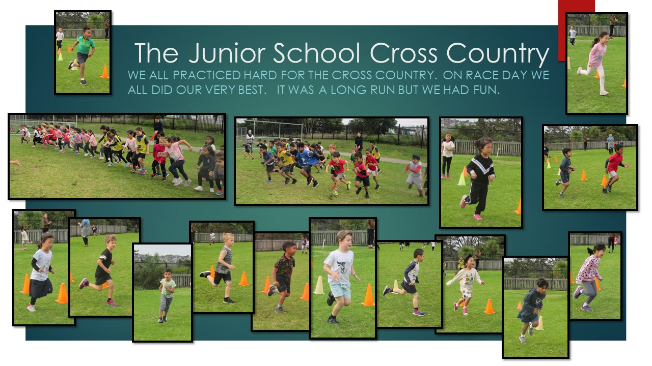 Blockhouse Bay Primary School - The Junior School Cross Country