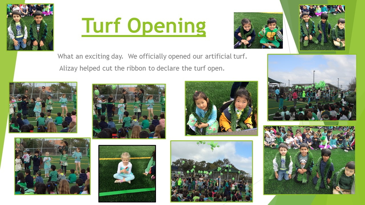 Blockhouse Bay Primary School - Turf Opening