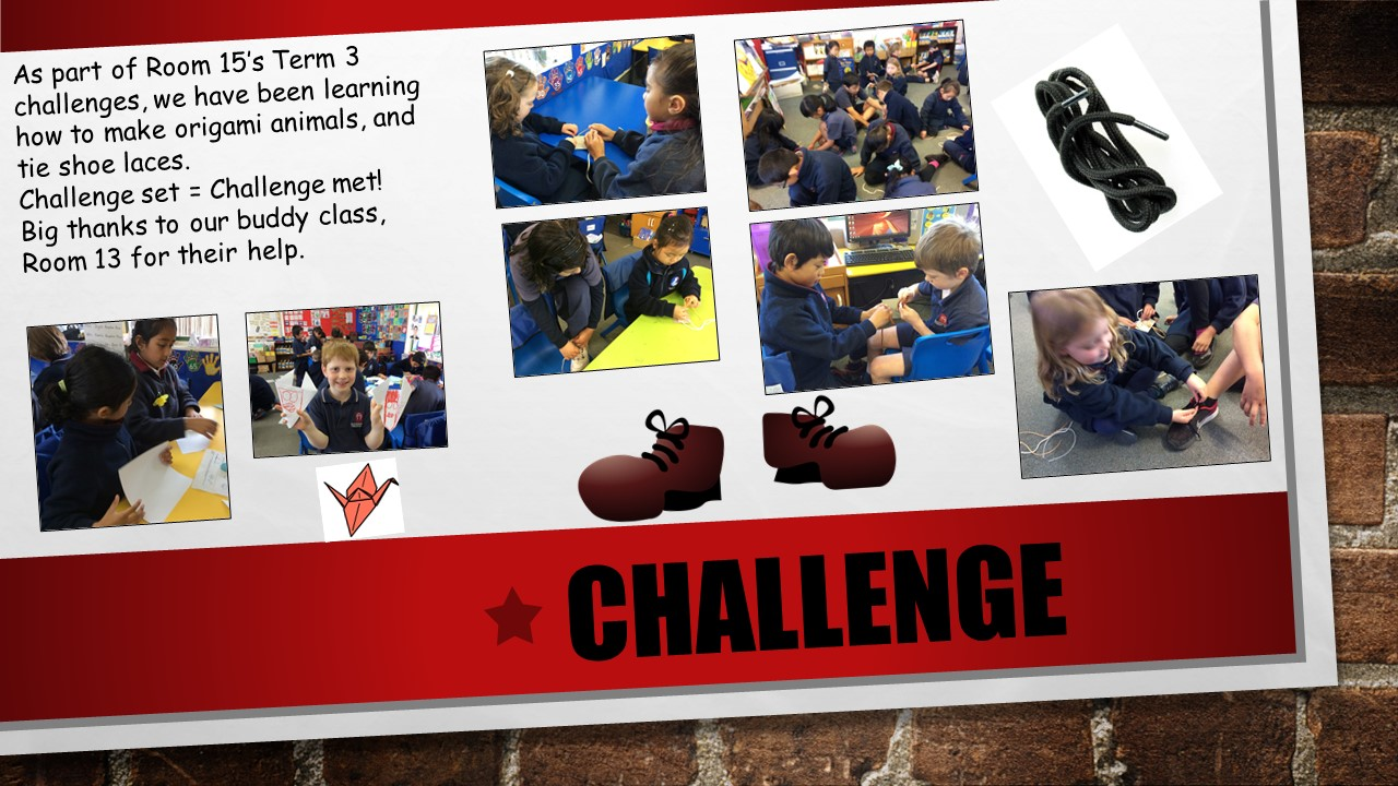 Blockhouse Bay Primary School - Challenge