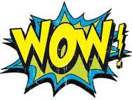 Blockhouse Bay Primary School - Room 19's Week of WOW!